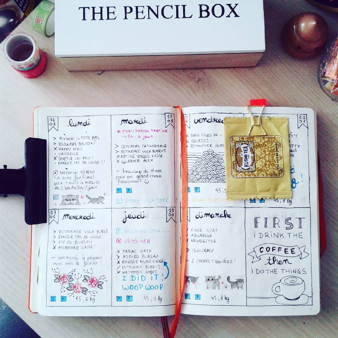 blogueuse-chat-bullet-journal
