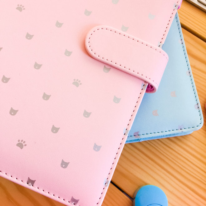 planner-chat-couleurs