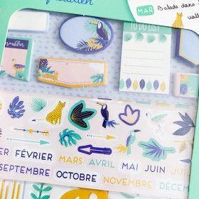 Kit d'accessoires BUJO et Planner / Thème Jungle