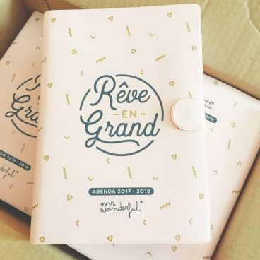 Agenda Mr Wonderful journalier petit modele
