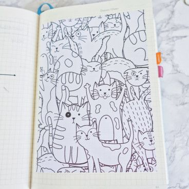 Bullet Journal coloriage chat